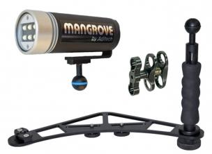 Mangrove Fotosystem FS2-VC3L4