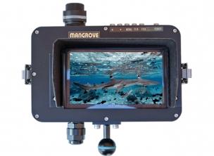 Mangrove 4K Standalone Monitor MS-6